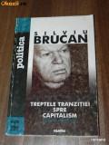 SILVIU BRUCAN - TREPTELE TRANZITIEI SPRE CAPITALISM (7465