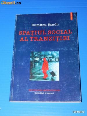 DUMITRU SANDU - SPATIUL SOCIAL AL TRANZITIEI foto