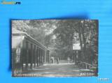 CARTE POSTALA ILUSTRATA VECHE BAI baile ZIZIN PARC PROMENADA - INTERBELICA, ANII 1920 (PROBABIL). judetul Brasov (v002