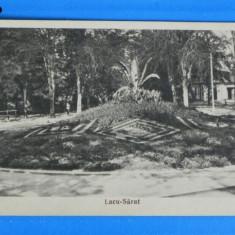 CARTE POSTALA ILUSTRATA VECHE 1935 - LACU lacul SARAT PARC Necirculata . interbelica. judetul BRAILA (v007