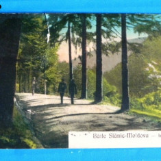 Carte postala veche BAILE SLANIC MOLDOVA IN PADURE. EDITURA GUSTI FEUERSTEIN CIRCULATA 1928. judetul bacau (v031