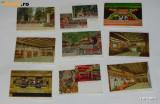 LOT 9 ILUSTRATE DE COLECTIE JAPONIA - TOSHUGU SHRINE, Necirculata, Printata