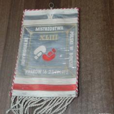De colectie FANION BOX POLONIA CAMPIONATE 1972 CRACOVIA - Fanion fotbal