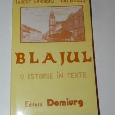 TEODOR SEICEANU, ION BUZAS - BLAJUL. O ISTORIE IN TEXTE
