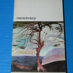 LAJOS NEMETH - CSONTVARY. colectia biblioteca de arta nr 124 - Carte Istoria artei