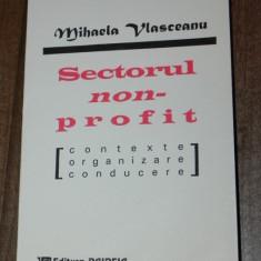 MIHAELA VLASCEANU - SECTORUL NON-PROFIT. CONTEXTE, ORGANIZARE, CONDUCERE - Carte Sociologie