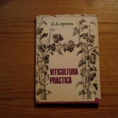 VITICULTURA PRACTICA - D. D. Oprea - 1976, 205 p.; tiraj: 6000 ex. - Carti Agronomie