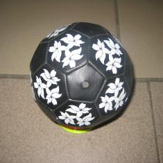 Mingi handbal - Minge handbal