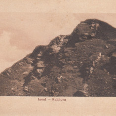 ROMANIA CARTE POSTALA INEUL-KUHHORN, LOT 1 CP - Carte Postala Transilvania dupa 1918, Necirculata, Printata