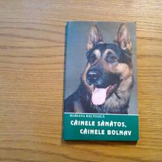 CAINELE SANATOS, CAINELE BOLNAV - Mariana Baltoaica - 1997, 118 p.