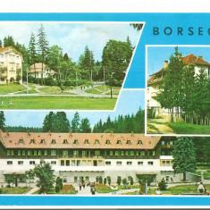 CPI (B5410) CARTE POSTALA - BORSEC. MOZAIC, Circulata, Fotografie