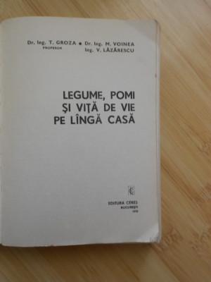 T. GROZA--LEGUME, POMI SI VITA DE VIE PE LANGA CASA foto