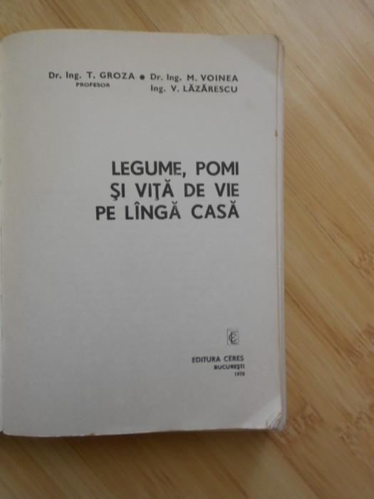 T. GROZA--LEGUME, POMI SI VITA DE VIE PE LANGA CASA