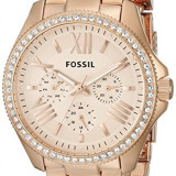 Fossil Women's AM4483 Cecile Multifunction Stainless | 100% original, import SUA, 10 zile lucratoare af22508 - Ceas dama Fossil, Sport, Analog