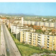 CPI (B5499) CARTE POSTALA - BAIA MARE STRADA GEORGE COSBUC, Necirculata, Fotografie