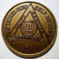 F.583 MEDALIE/JETON USA SUA PROGRAMUL ALCOOLICII ANONIMI XL 34mm, America de Nord, An: 2000