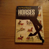 THE WORLD BOOK OF HORSES - G. McMillan, illustrated: Sam Savitt - 1968, 93 p. - Carte sport