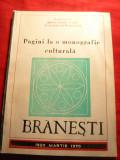 R.si V.Enachescu -Monografie Branesti judet Dambovita  1920-1970 , ilustratii