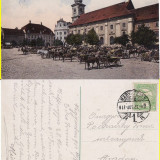 Sibiu, Hermannstadt -   Rara- animata