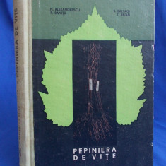 N. ALEXANDRESCU - PEPINIERA DE VITE ( VITICULTURA ) - 1966 - Carti Agronomie