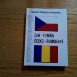 DICTIONAR CEH - ROMAN - Teodora Dobritoiu-Alexandru - 2008, 342 p.