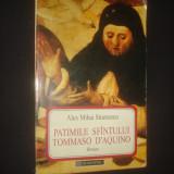 ALEX MIHAI STOENESCU - PATIMILE SFANTULUI TOMMASO D'AQUINO - Roman, Humanitas, Anul publicarii: 1995