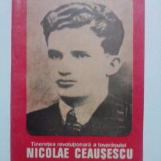 Tineretea revolutionara a tov. Nicolae Ceausescu / R7P4S - Carte Epoca de aur