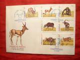 Plic FDC - Fauna din Angola 1980