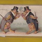 FELICITARE PORCI 1908 - Carte postala tematica, Circulata, Printata