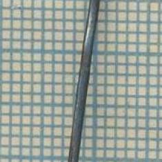1116 NEW INSIGNA -SIMBOL FLOARE DE COLT -ALPINISM, TURISM -starea care se vede