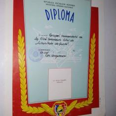 Diploma M.A.N. - R.S.R. - Militar de Frunte ~3~ - Diploma/Certificat