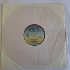 "VINIL ARIOLA RECORDS ROSU L.P. 12"" AMII STEWART 1979"