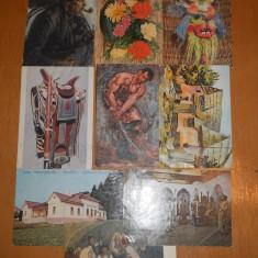 C.P. ARTA / MUZEE LOT 38 CARTI POSTALE TEMATICE - Carte postala tematica, Necirculata, Printata
