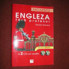 ENGLEZA FARA PROFESOR - SANDRA STEVENS ( nu contine CD ) - Curs Limba Engleza