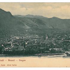 1110 - L i t h o, BRASOV - old postcard - unused - Carte Postala Transilvania pana la 1904, Necirculata, Printata