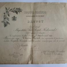 RARITATE! BREVET FERDINAND RASPLATA 15 ANI SERVICIUL MILITAR PLT.MAJOR JANDARMI