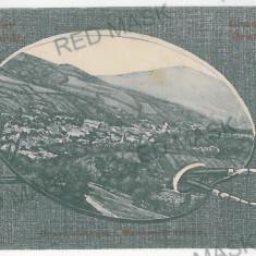 2814 - ORAVITA - old postcard - used - 1909 - Carte Postala Banat 1904-1918, Circulata, Printata