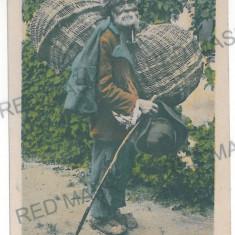 2544 - SIBIU, Ethnic, Gypsy a basket - old postcard - unused - 1918 - Carte Postala Transilvania 1904-1918, Necirculata, Printata