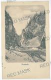 753 - Brasov, Zarnesti, Mountain PIATRA CRAIULUI - old PC, CENSOR - used - 1917