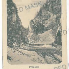 753 - Brasov, Zarnesti, Mountain PIATRA CRAIULUI - old PC, CENSOR - used - 1917, Circulata, Printata