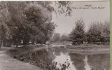 Bnk cp Pitesti - Vedere din parcul Vasile Roaita - circulata, Printata