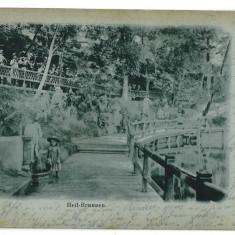 3393 - L i t h o, Sibiu, OCNA SIBIULUI - old postcard - used - 1903 - Carte Postala Transilvania pana la 1904, Circulata, Printata