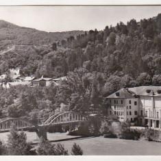 Bnk cp Calimanesti - Pod peste Olt - circulata - Carte Postala Oltenia dupa 1918, Printata