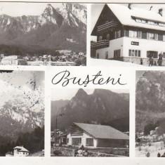 Bnk cp Busteni - Vedere - circulata - Carte Postala Muntenia dupa 1918, Printata