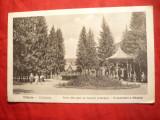 Ilustrata Valcele judet Covasna - 1924- Parcul si Izvorul principal, Circulata, Printata