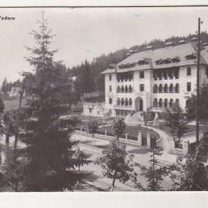 Bnk cp Predeal - Vedere - uzata - Carte Postala Transilvania dupa 1918, Circulata, Printata