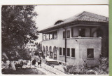 Bnk cp Campina - Casa pionierilor - uzata, Circulata, Printata