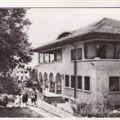 bnk cp Campina - Casa pionierilor - uzata