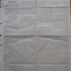 Ziarul Albina , nr. 11 , 1870 , Budapesta , in limba romana , Director V. Babes
