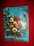 Cultura marului (pomicultura) an 1967/218pagini-Fl.Lupescu